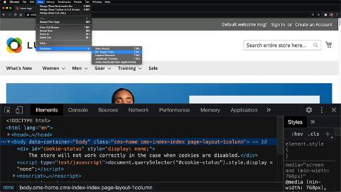 Disable caches for JavaScript development