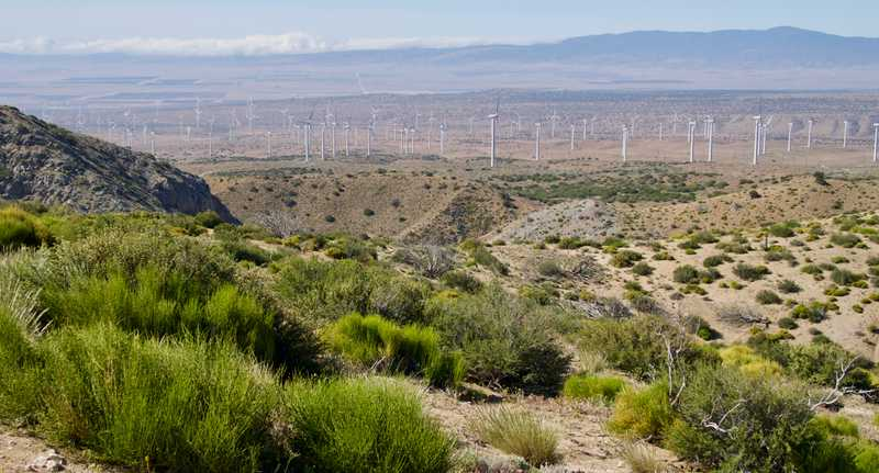 View of wind farm in Antelope Valley