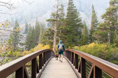 California Fall Colors and Eastern Sierra Adventures with our Dog, Spruce