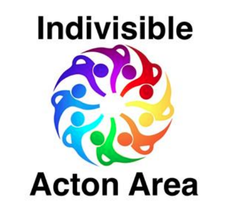 Indivisible Acton Area