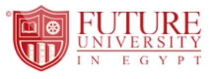 Future University