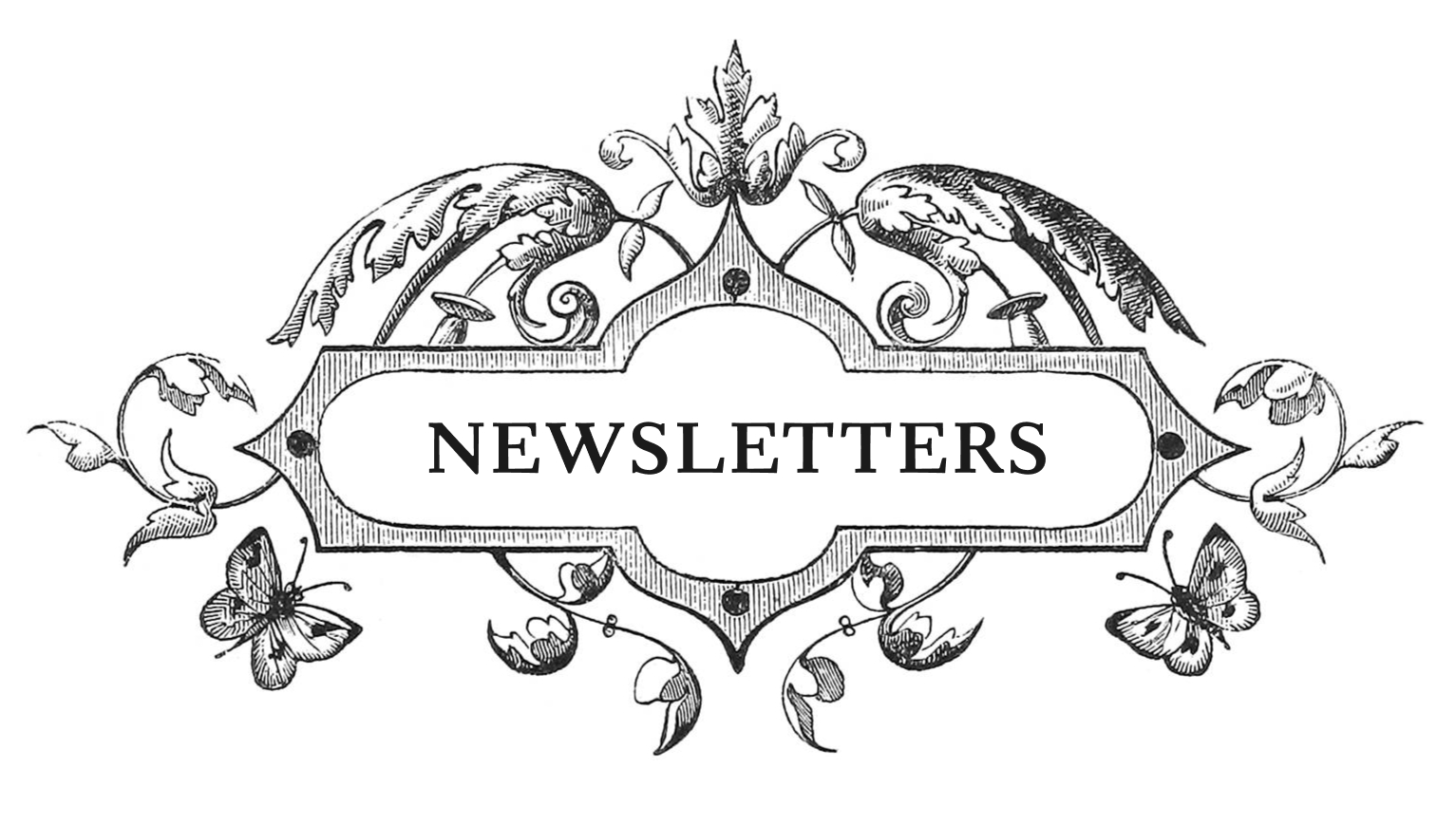 An ornamental leaf design with the word 'newsletter' in the center