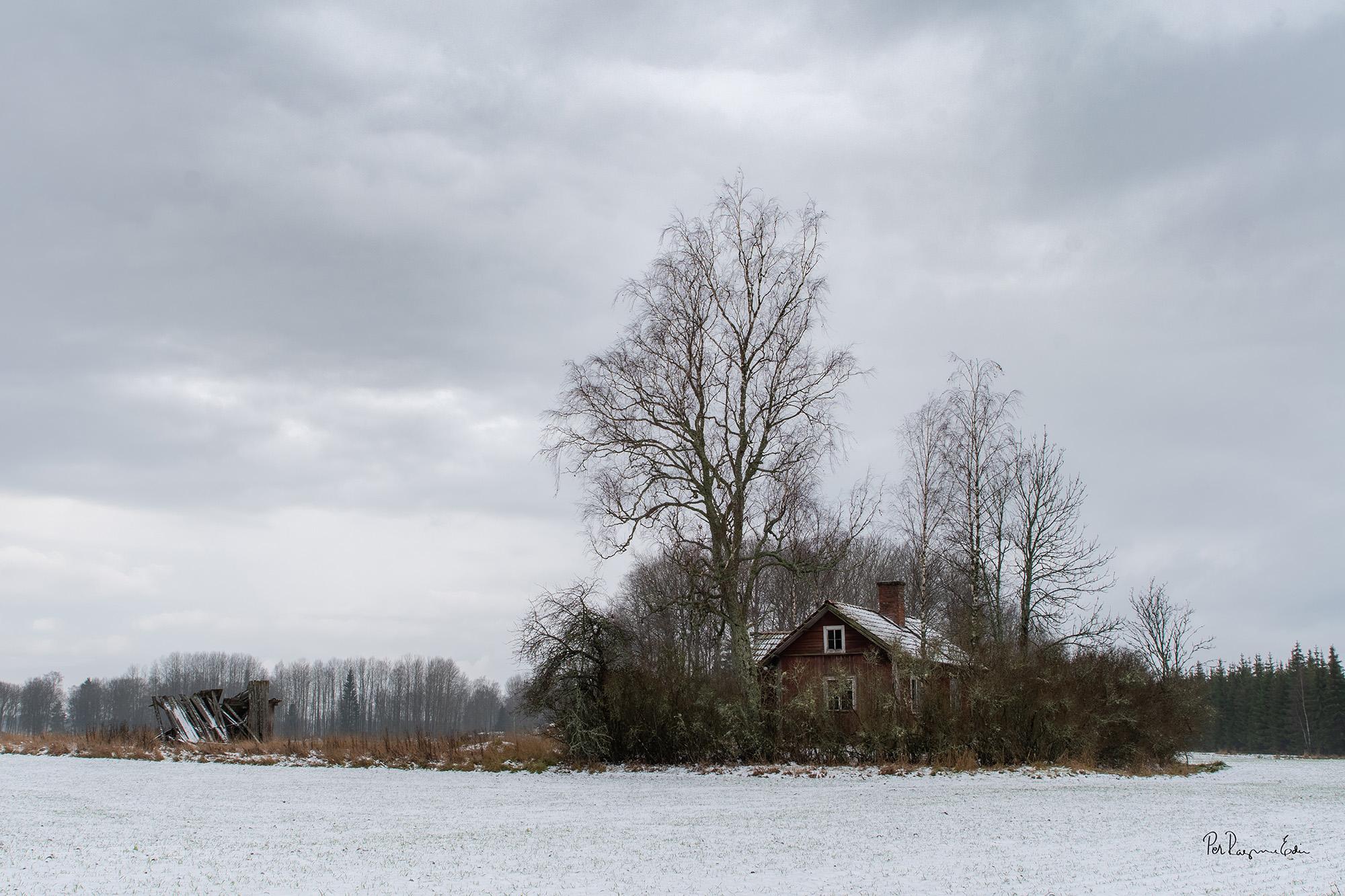 Torpet, tidig vinter 2019