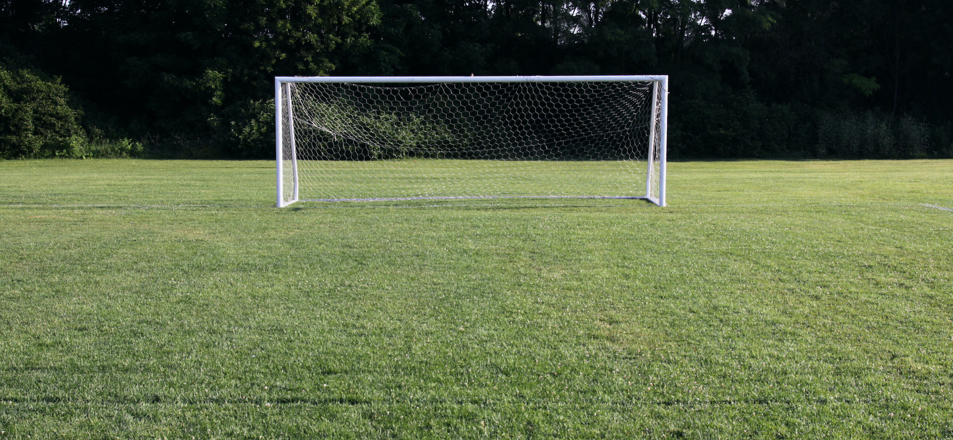 An empty, grass football field. The camera is looking at an open goalmouth.