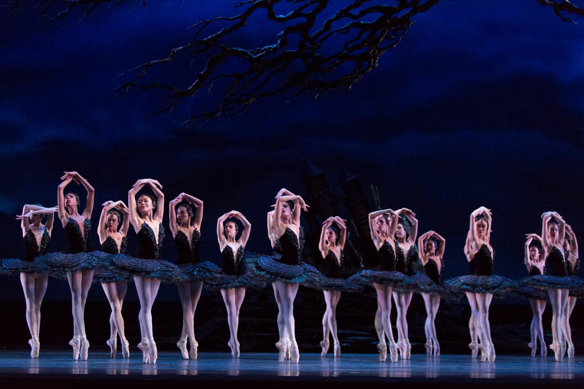 Chorus of ballerinas in black tutus on point, under craggy branch against dark blue clouds.
