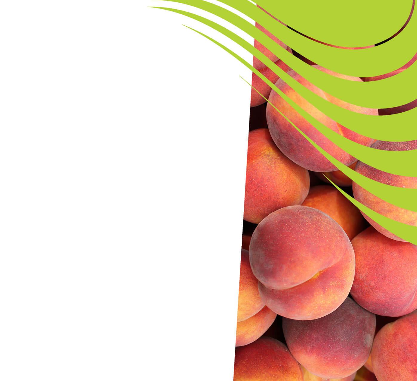 fertiliser for peaches