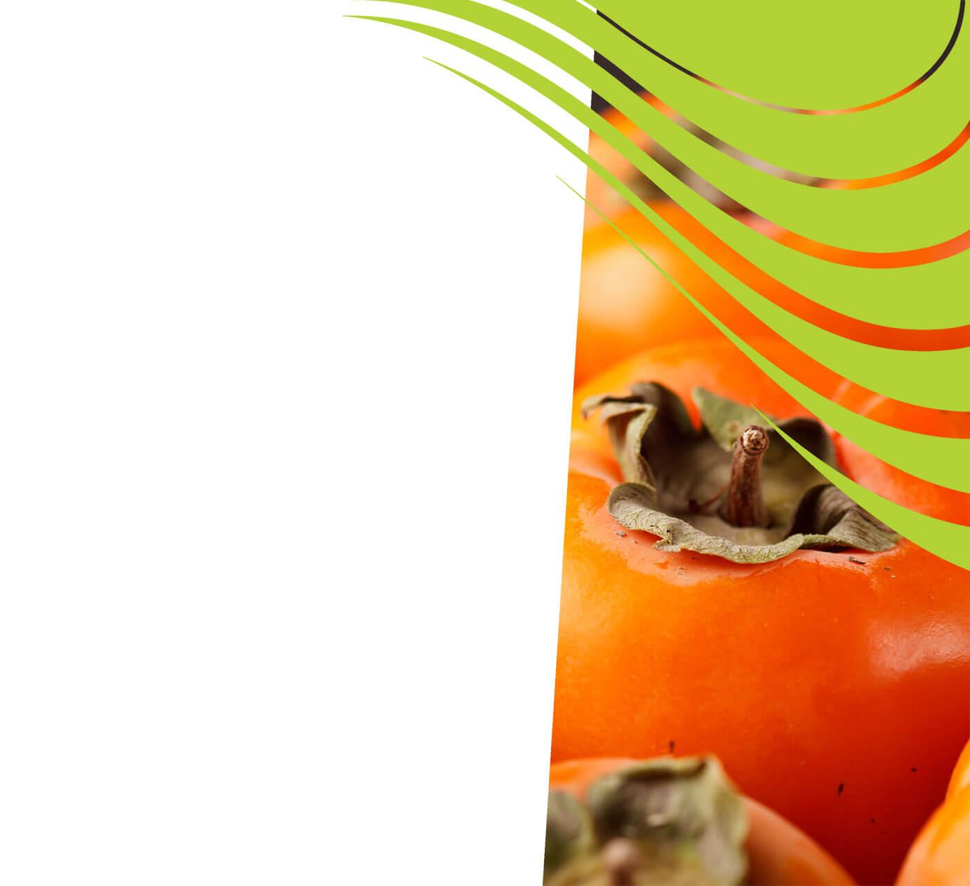 fertiliser for persimmons