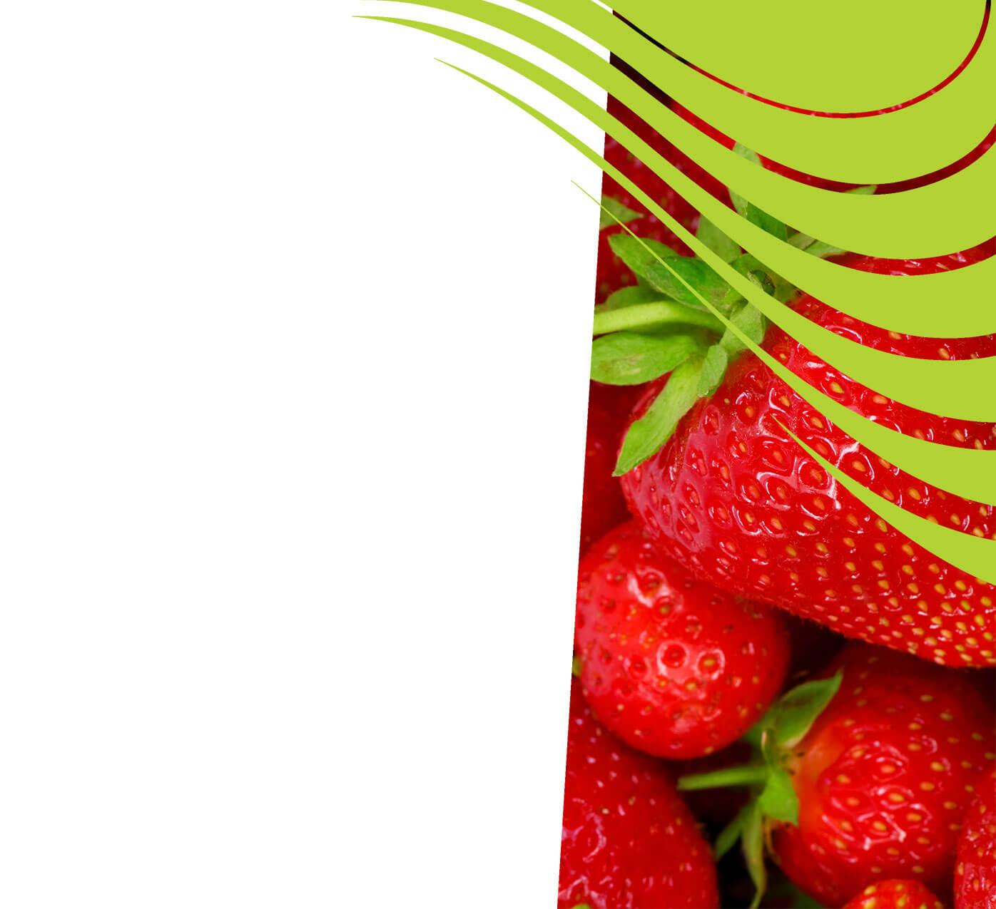 fertiliser for strawberries