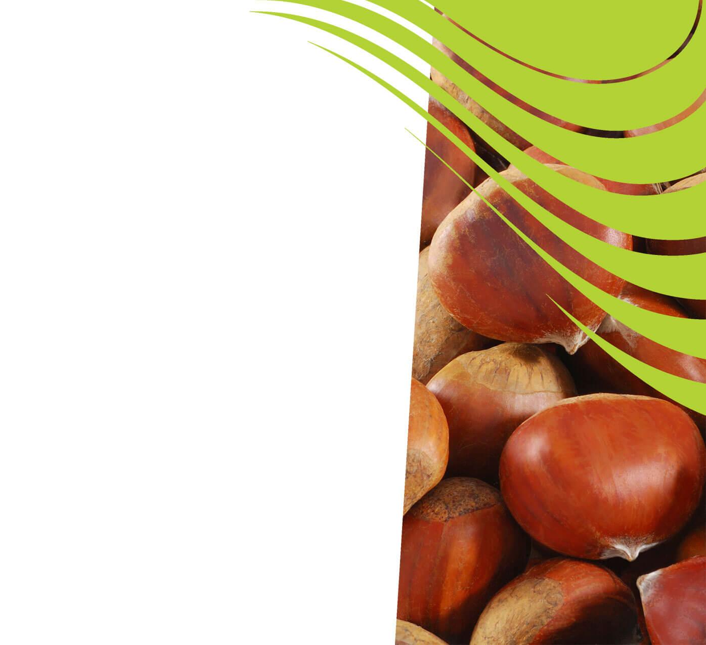fertiliser for chestnuts