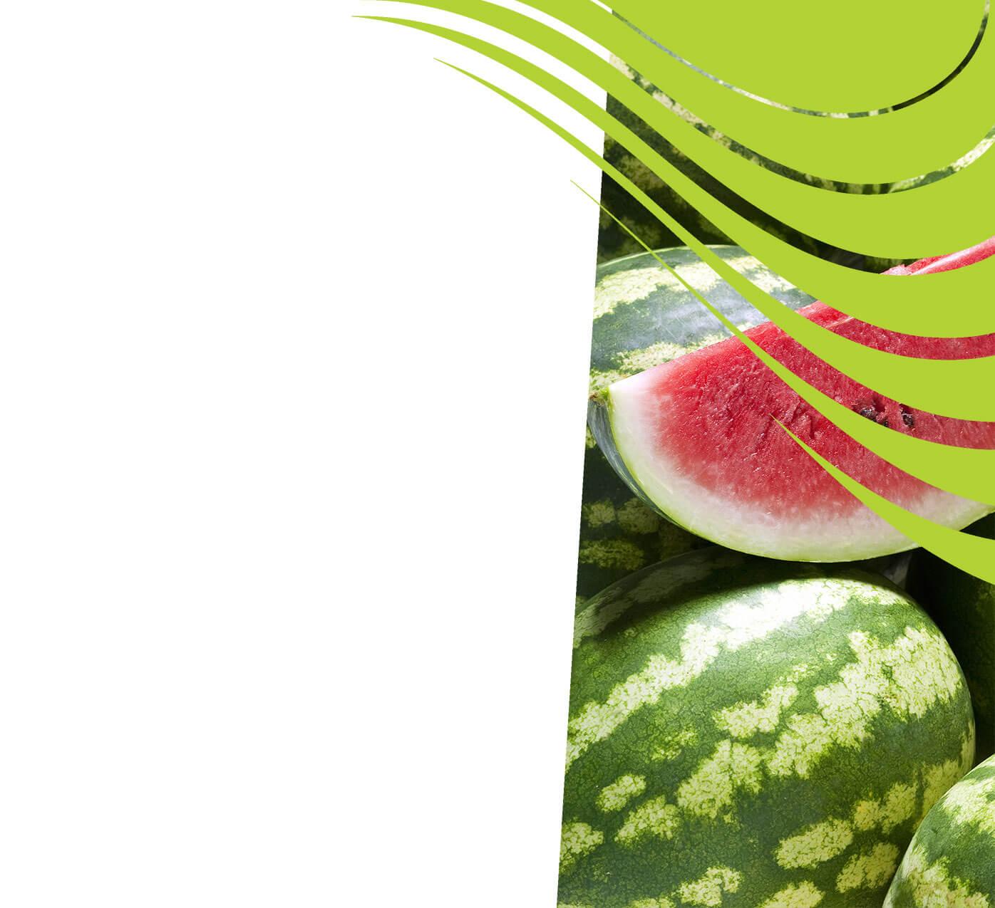 fertiliser for melons