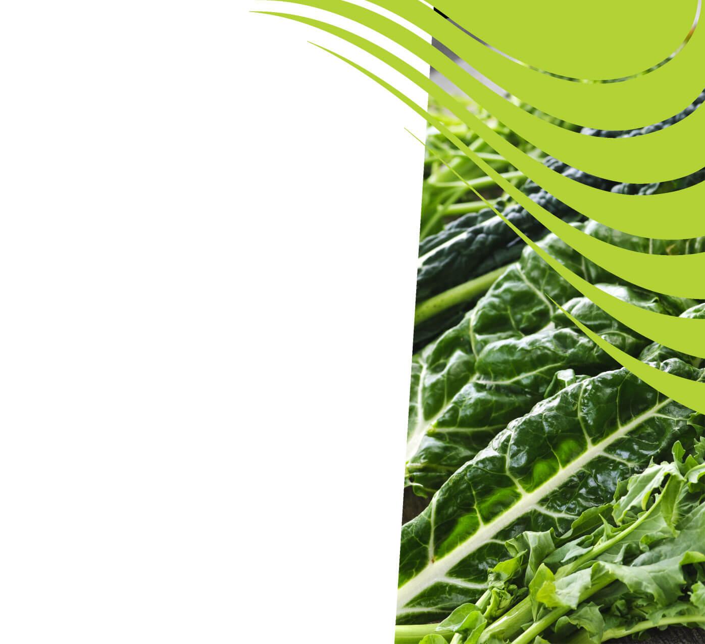 fertiliser for leafy-greens