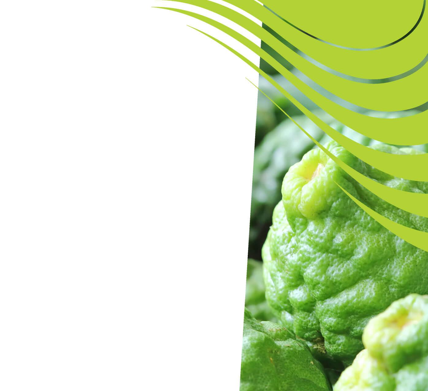 fertiliser for bergamot