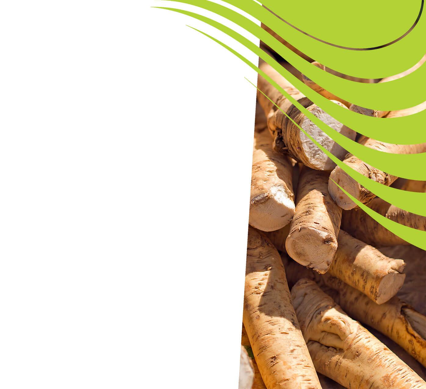 fertiliser for horseradish