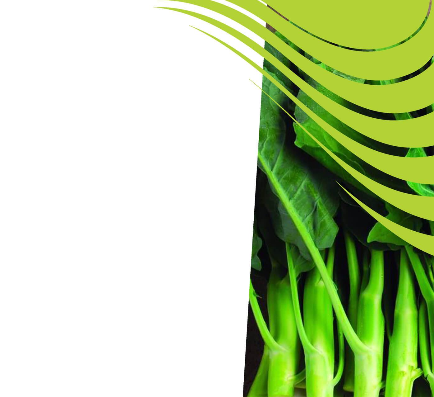 fertiliser for kai lan
