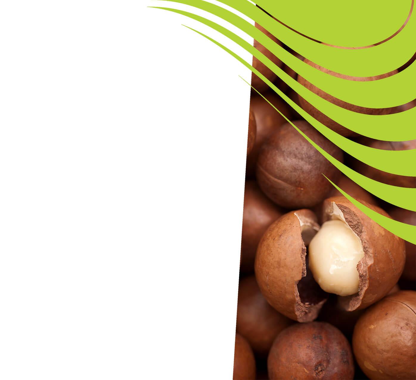fertiliser for macadamias