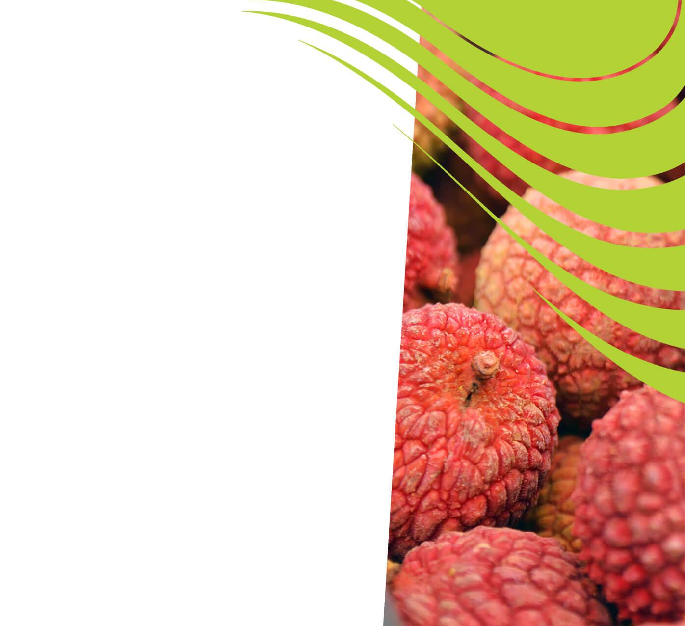 fertiliser for lychees