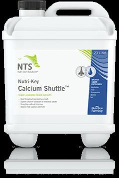 calcium-shuttle