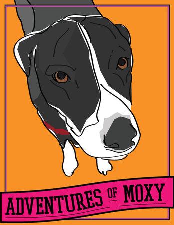 Moxy2